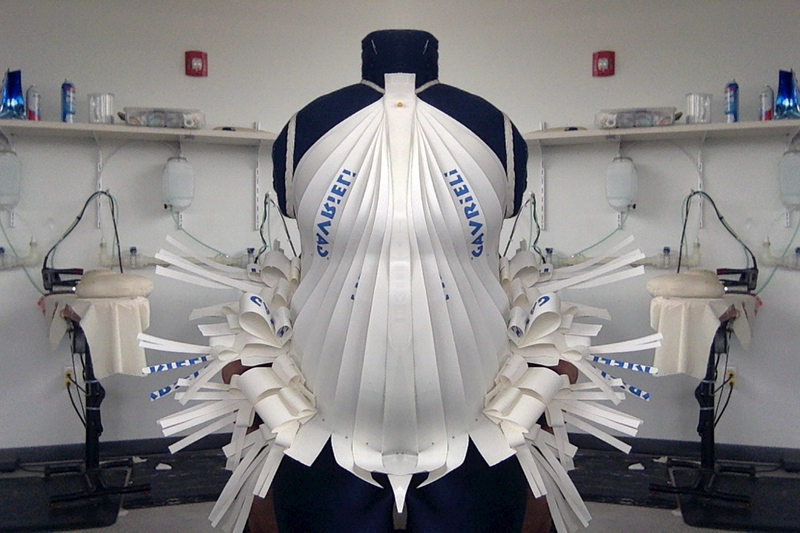 Plus Size Dress Form Created By Cornell Alumni To Remain On Display